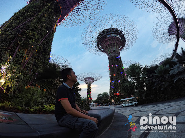 Gardens by the Bay Singapore Blog Review Klook