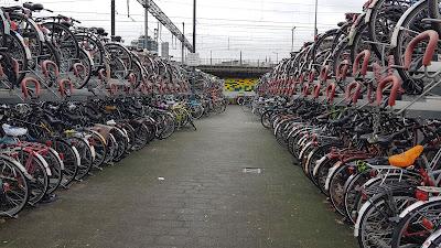tante biciclette ad Eindhoven