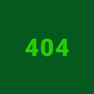 Sako Samuli Koivulahti, Vaalinumero 404, Äänestä virhekoodia