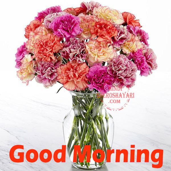 Good Morning Greetings With Carnations Flowers