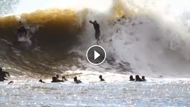 1000 Kooks Wipeouts and Shred
