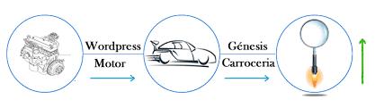 Experto en Genesis framework