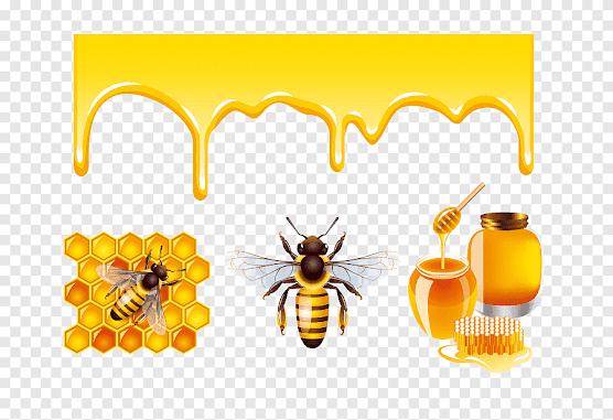 Έχεις ετικέτα στο μέλι σου; Μάθε τι πρέπει να αναγράφεται σε αυτή