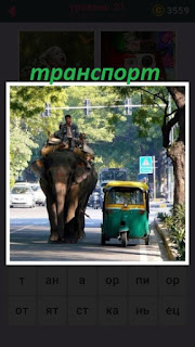 по улице едет транспорт слон и мотоцикл