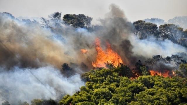 Σε 55  δασικές πυρκαγιές σε ένα 24ωρο