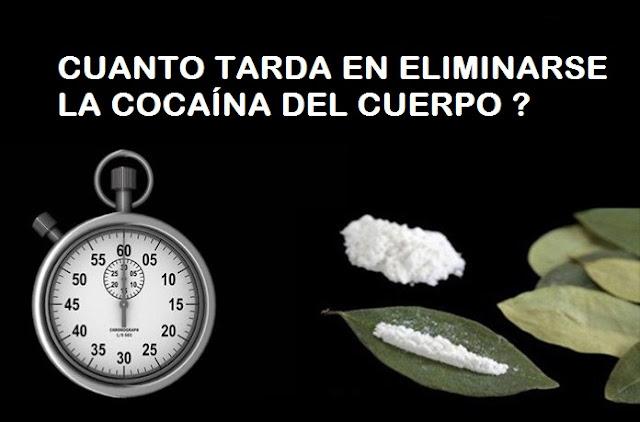 cuanto tarda en desaparecer la cocaina del cuerpo