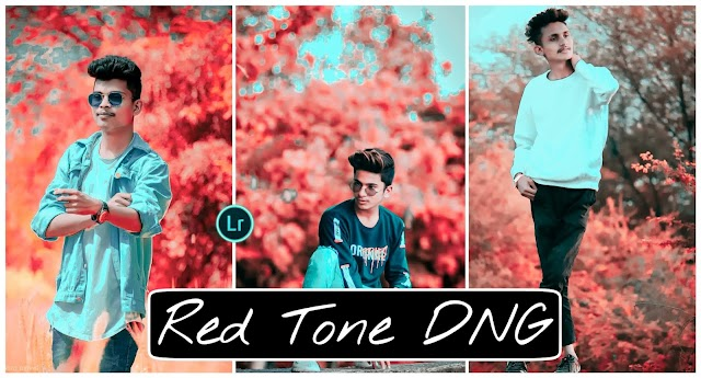 red tone Lightroom presets free download