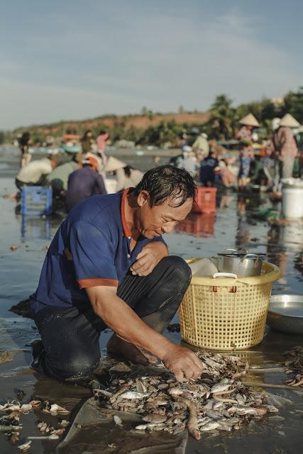 """Bước xuống một đoạn bậc tam cấp, bạn sẽ """"rơi"""" vào khu chợ cá. Đây là nơi người dân địa phương tiến hành thả lưới mỗi sáng cũng như thu mua những con ghẹ, tôm, cá tươi từ những thuyền thúng vừa đánh bắt mang vào. Khung cảnh mua bán tấp nập ở đây cứ tiếp diễn ngày này tháng nọ như một vòng tuần hoàn."""