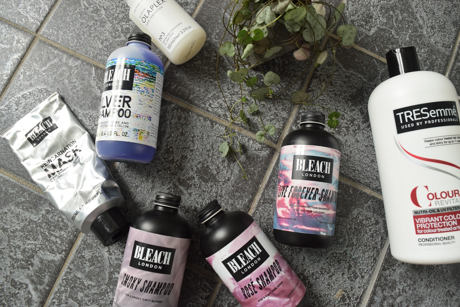 hair products flatlay featuring Bleach London Shampoos, hair treatments and a string of hearts plant