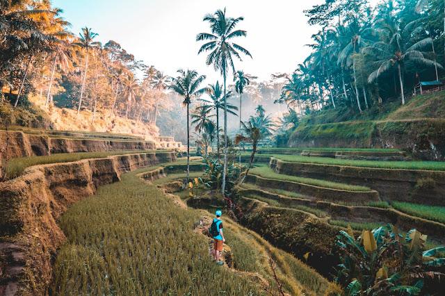 6 TIPS JIMAT TRAVEL KE BALI INDONESIA