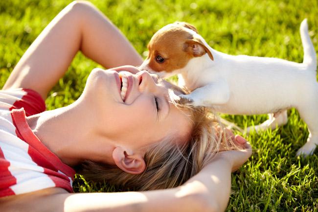 Jak opiekować się szczeniakiem?
