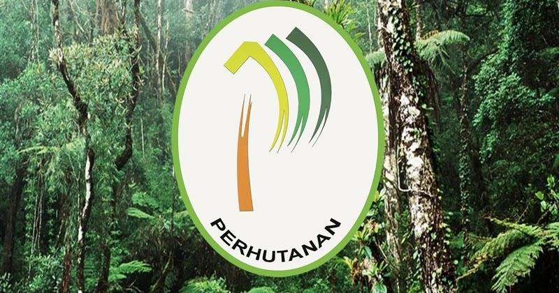 Senarai Cawangan Jabatan Perhutanan Negeri Kelantan Layanlah Berita Terkini Tips Berguna Maklumat