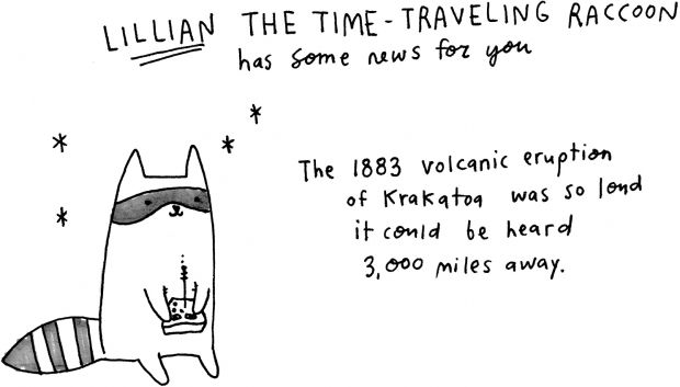 Lilian The Time Traveling Racoon