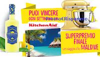 Logo Limoncetta '' La stagione dei limoni'': vinci KitchenAid Artisan e viaggio alle Maldive