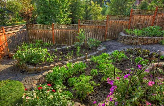 kebun dihalaman rumah indah