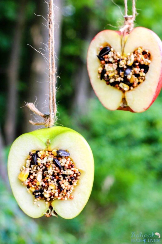 apple birdseed feeders craft for kids