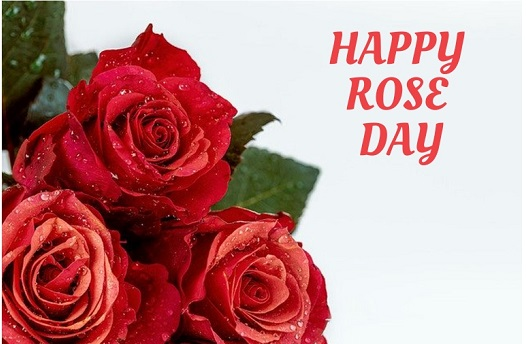 Valentines Day Wishes : All Valentines Days List, Images, Quotes, Messages.
