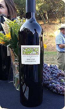 Scrumptious 2013 Vino Noceto Marmellata Sangiovese