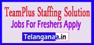 TeamPlus Staffing Solution Pvt Ltd Recruitment 2017 Jobs For Freshers Apply