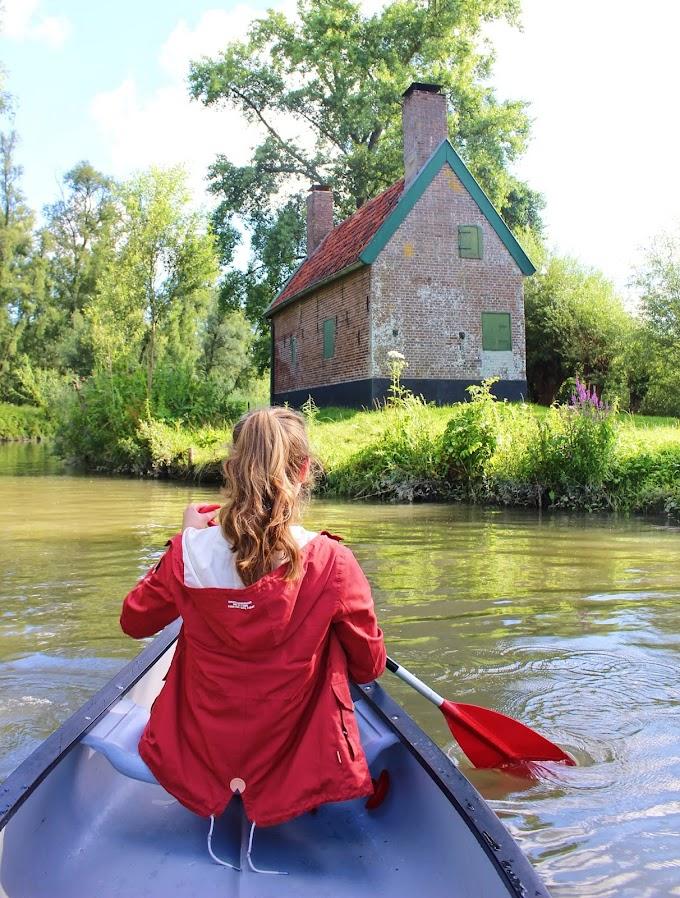 Kanoën over de mangrove-achtige kreekjes van Nationaal Park De Biesbosch in Dordrecht