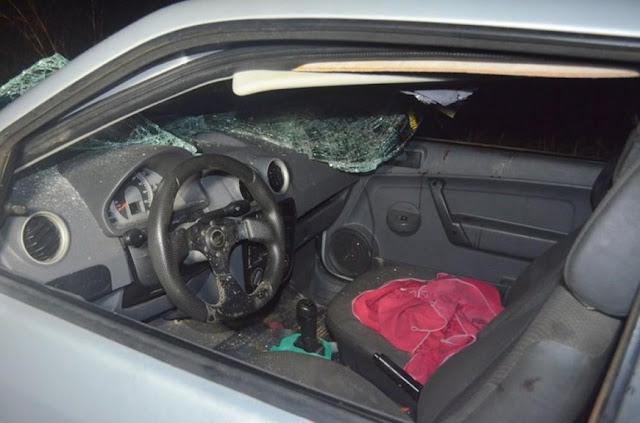 Casal e outras duas pessoas ficam feridos em batida de carro contra vaca