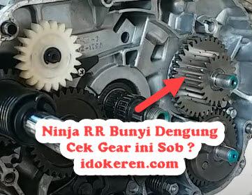 Ninja RR Bunyi Dengung Cek Gear ini Sob ?