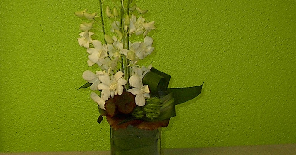 Orchids, The - Orchids