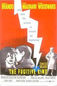 Watch The Fugitive Kind Online Free in HD