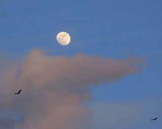 Puriscal moonrise