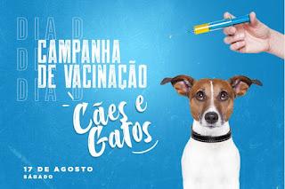 O Dia D da Campanha de Vacinação para cães e gatos será no próximo sábado, 17 de agosto