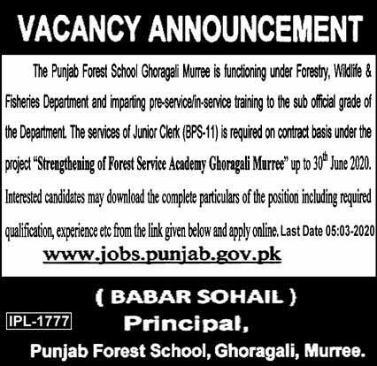 Junior Clerk is required in Punjab Forest School Muree