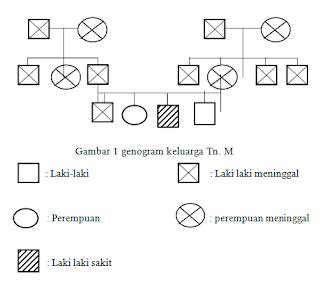 Diagram Keluarga Klien Batu Ginjal dan urolitiasis