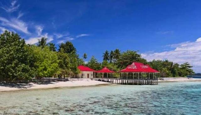 Menikmati Keindahan Bawah Laut Kepulauan Gura Ici Di Maluku Utara