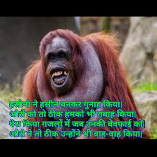 joke shayari hindi