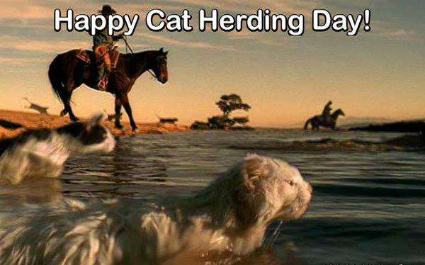 National Cat Herders Day Wishes Pics