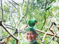 Bird Aviary, Berfoto Bersama Burung di Kubah Burung Raksasa Taman Safari Indonesia