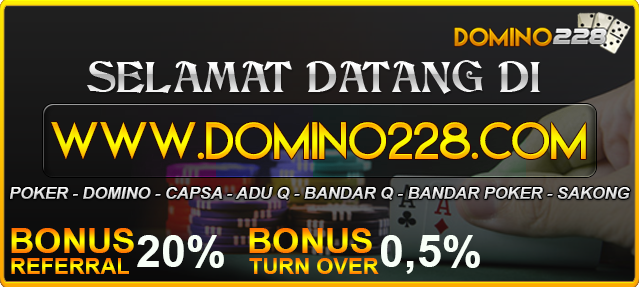 domino228