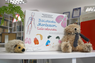 Biblioteczka Montessori - ciało człowieka - recenzja