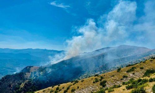 Ένα αεροσκάφος Canadair που αποδεσμεύτηκε από άλλο πύρινο μέτωπο της χώρας, επιχειρεί για την κατάσβεση της φωτιάς στο Μιτσικέλι.