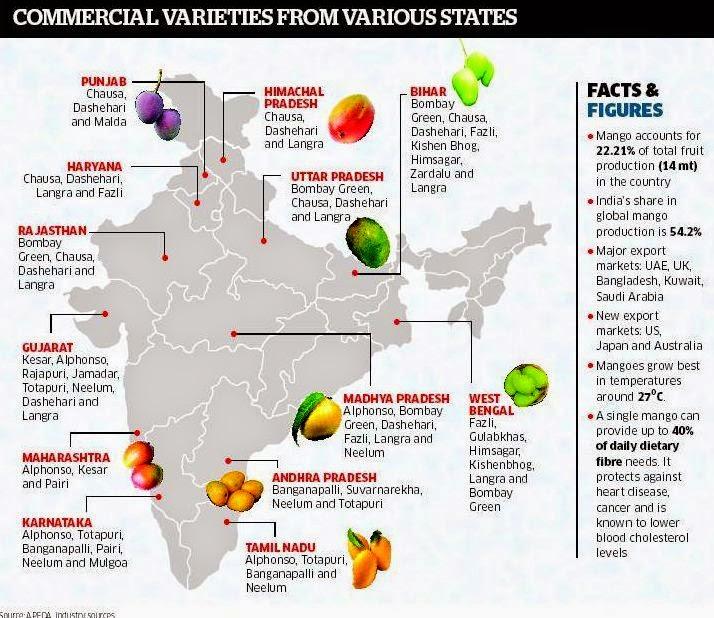 INDIA : Mango supply can't meet demand