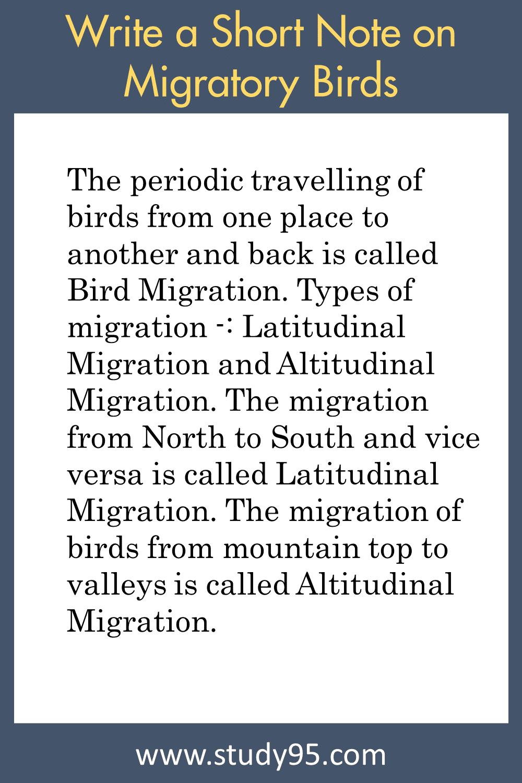 Short Note on Bird Migration