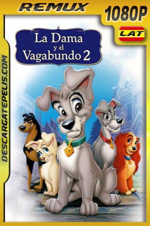 La dama y el vagabundo 2 (2001) 1080p Remux Latino – Ingles