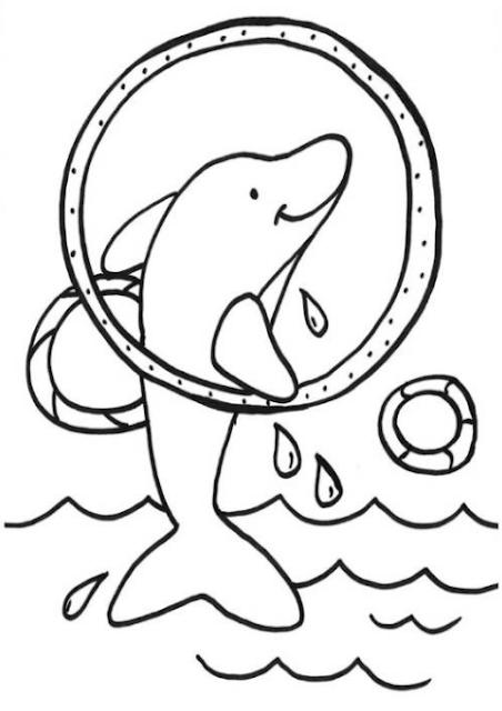 50 ausmalbilder delphin meerjungfrau  farbung
