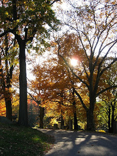 https://commons.wikimedia.org/wiki/File:Fall_landscape,_Homewood_Cemetery,_2020-11-08,_02.jpg