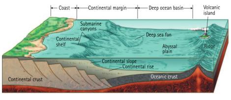 Ubicación de la cuenca oceánica
