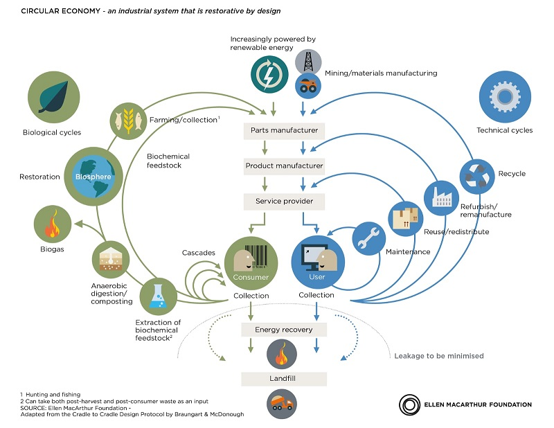 Mariposa Economía Circular, Mercedes Herranz, Modelos de negocio