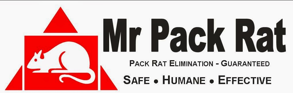 Mr. Pack Rat
