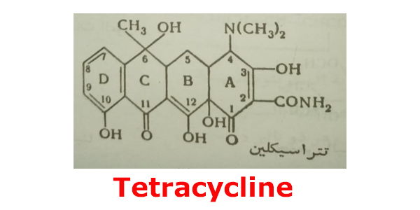تتراسيكلين tetracycline