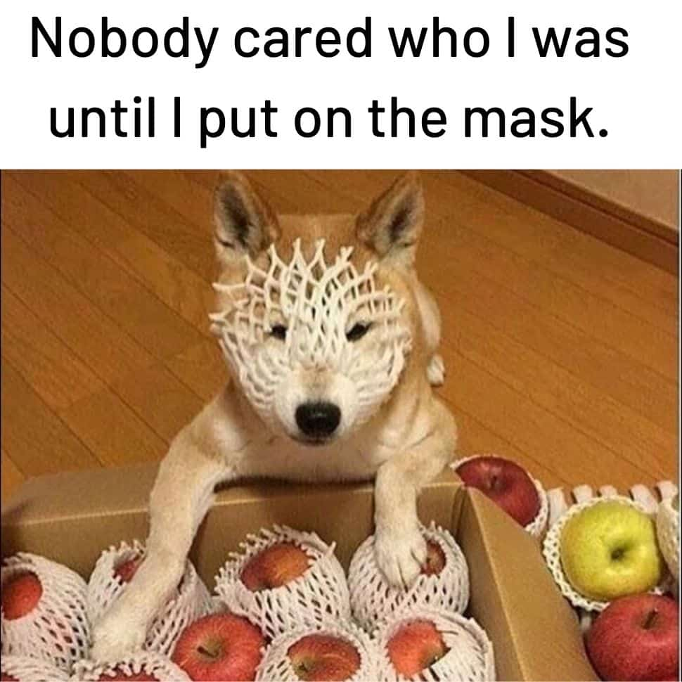 Nobody-cared-how-I-was-until-I-put-on-the-mask-humor-dark-memes
