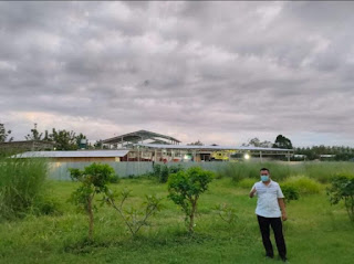 Gubernur Puji Progres Pembangunan Pabrik Pakan Ternak di STIPark Banyumulek